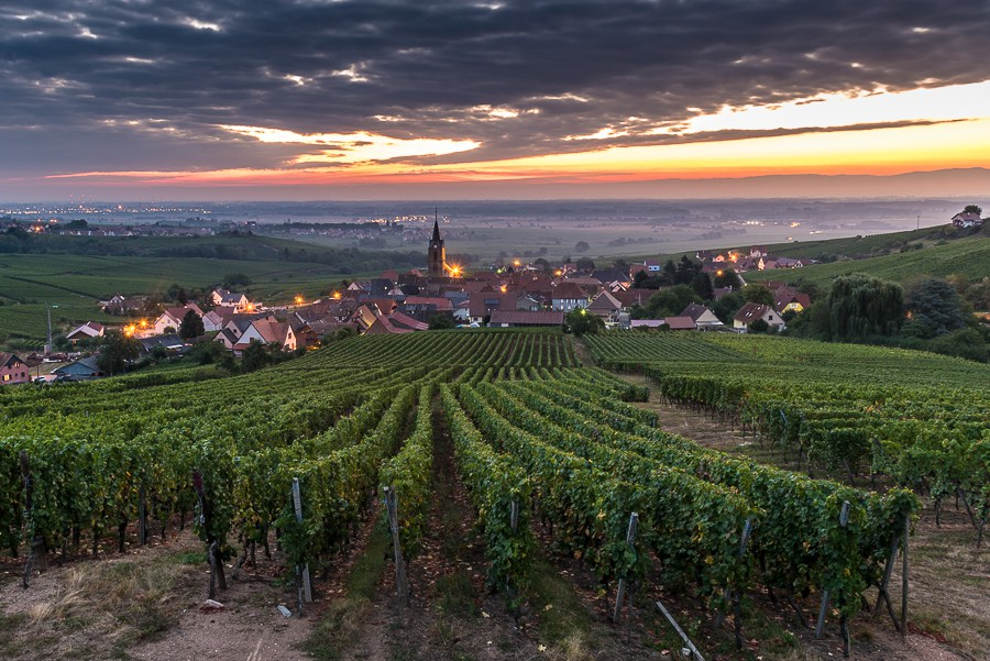 paysages-vignoble-cremant-rodern-900x600-2739